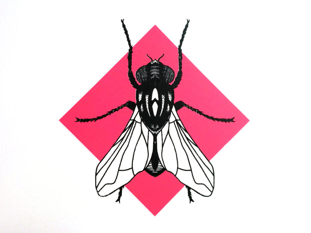 07-mosca-elisa-simoncelli
