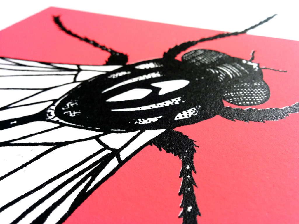 08-mosca-elisa-simoncelli