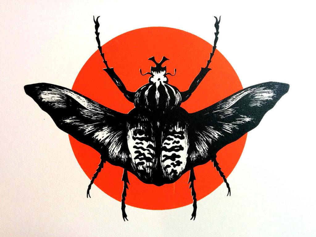 11-scarabeo-elisa-simoncelli